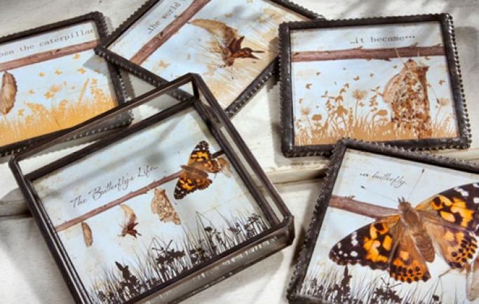 Tạo ra bầu không khí dễ chịu và duyên dáng đến không gian nhà được lấy cảm hứng từ các chú bướm cực thú vị (P2)