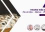 THƯƠNG HIỆU ĐÁ QUÝ KIM TỰ THÁP – Các Sản Phẩm Thạch Đá Trị Liệu Phong Thủy Tâm Linh ích lợi cho tất cả mọi người